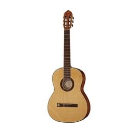 Guitare Pro Arte GC210A