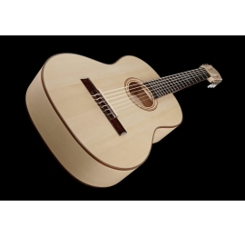Guitare Pro-Natura SILVER MAPLE