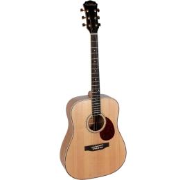 Guitare Freshman FA1 DM