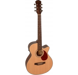 Guitare Freshman FA1ANS
