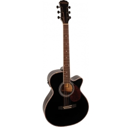 Guitare Freshman FA1ABK