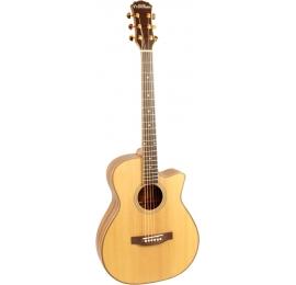 Guitare Freshman SONGO C