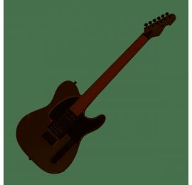Guitare LTD TE200R-SW