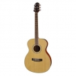 Guitare CRAFTER HT-100