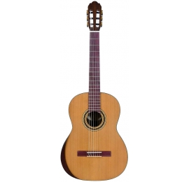 Guitare Pro Andalus 10MA Indian Summer Cedar Nat