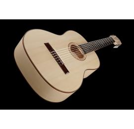 Guitare Pro-Natura SILVER MAPLE